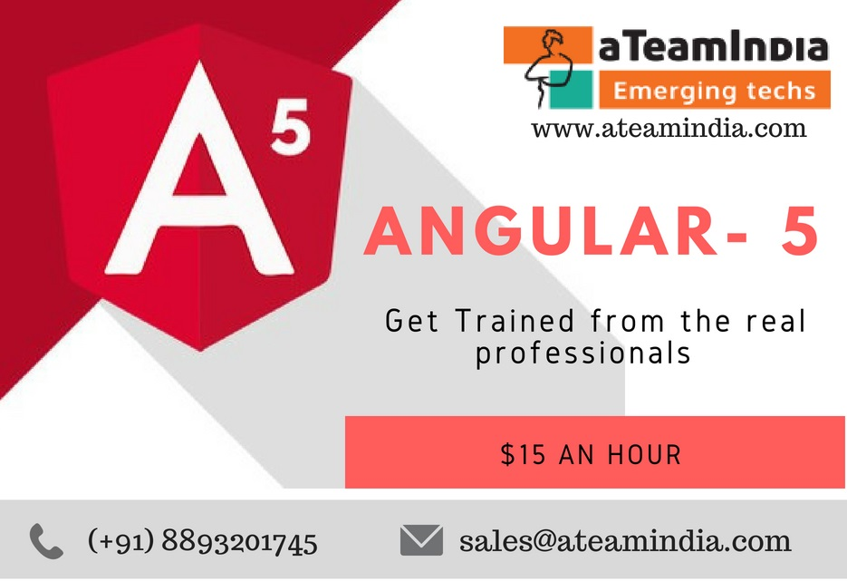 Angular 5 Developers