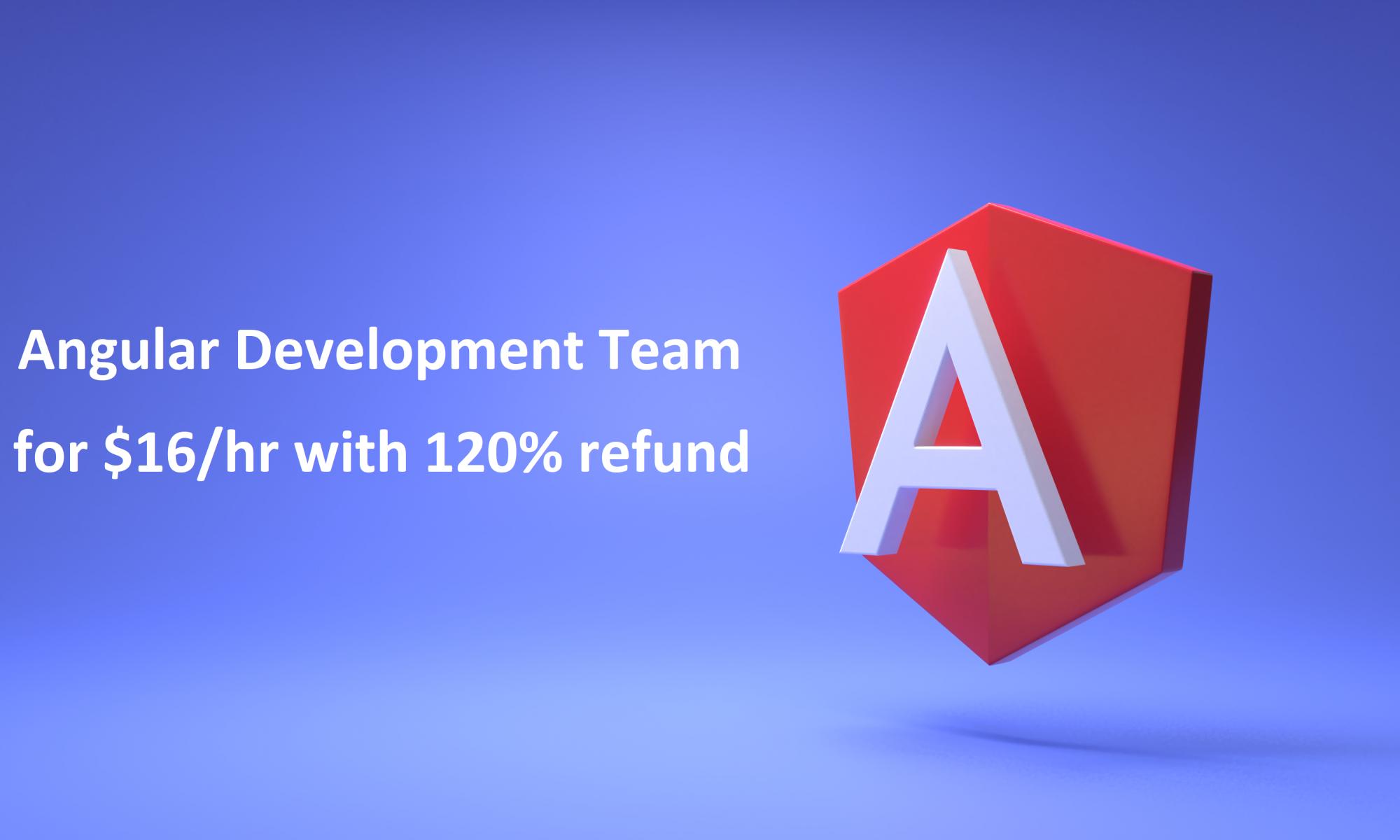 Angular Development Team